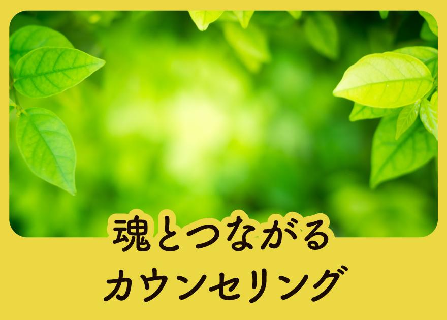 banner_3_001-c